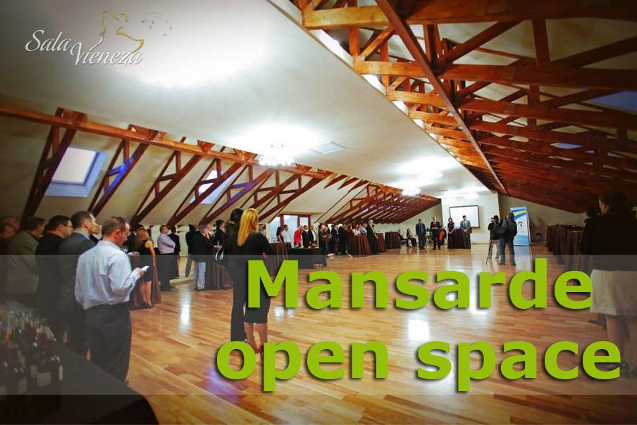 mansarde_open_space