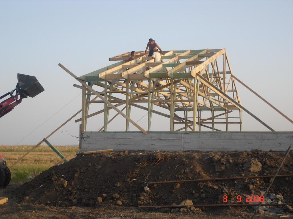 Suina din lemn - Turnu Magurele