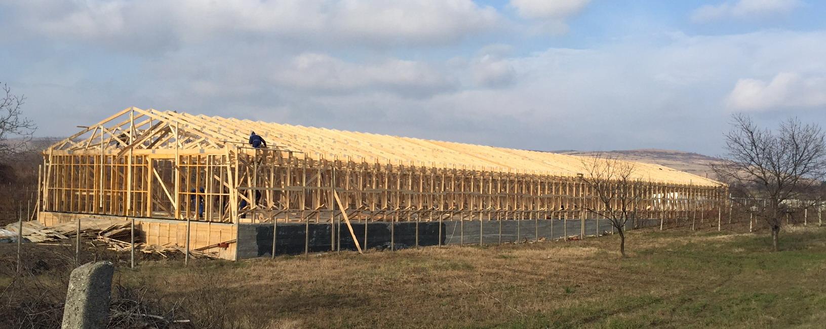 hala din lemn industriala 3