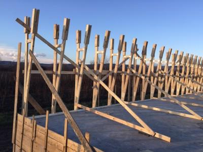 hala din lemn prahova